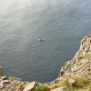 ca. 300 Meter über dem Meer