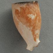 Gouda, ca 1720-1740
