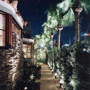 緑道(夜景)