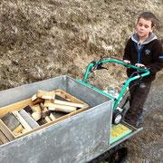Alle helfen mit beim Holztransport