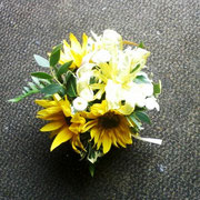Sonnenblumenvariation 1