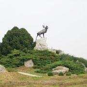 BEAUMONT-HAMEL ''Le caribou'' emblème des TERRE-NEUVIENS
