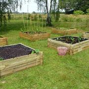 Und noch drei Gemüse-Hochbeete kommen dazu