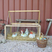 Ostern - die Käfigtür steht offen