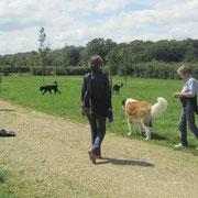Mit den beiden Barbaras, Karla und Regula und den Hunden Luke, Amir und Winston in Chapaize