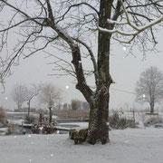 Soviel Schnee wie in diesem Winter sah ich hier draussen bisher noch nie