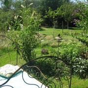 Ein Bett im Garten