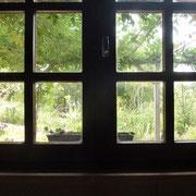Blick aus dem frisch geputzten Fenster im Atelier