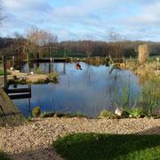 Der volle Teich Anfangs Januar
