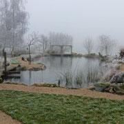 Frostiger Nebel verzaubert Mitte Januar alles in Weiss - der Teich ist zugefroren