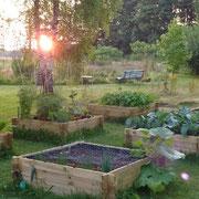 Gemüsegarten gedeiht aufs Prächtigste