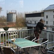 Auf dem Balkon der Bisquotterie in Cuisery