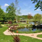 Blick vom Baumhaus über den Teich