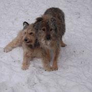 Tara und Leon im Schneefieber