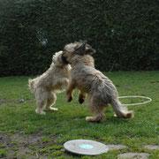 Lilo & Pippin