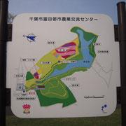 花見 シバサクラ 芝桜 千葉市 富田 ゴールデンウィーク 公園概要図