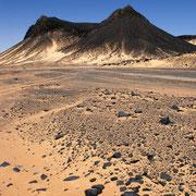 """Die """"Schwarze Wüste"""" von goldenem Sand bedeckt"""