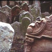 Prag, jüdischer Friedhof