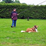 Platzkommando während der Jagd