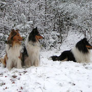Das obligatorische Gruppenfoto: v. l. Meggy, Klara, Franki