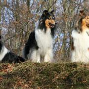 v. li.: Franki, Klara, Meggy