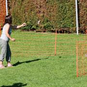 Frauchen schmeißt die Beute hinter den Zaun (Foto: Ch.Schulze)