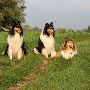v.li.: Franki, Klara, Meggy