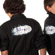 logo team silver drive, f1 2013