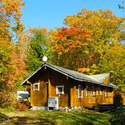 紅葉に美しく染まる 緑の村