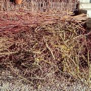 Das Grundmaterial: Gartenschnitt