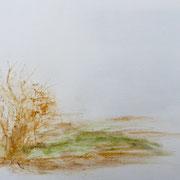 Prélèvement de terre et herbe, Ile de Pâques