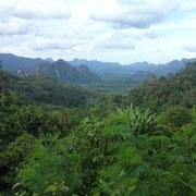 Vue de la jungle de Kao Sok