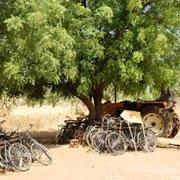 Vélos des braconniers confisqués
