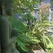 Unser Museumsbuddha - Seitenperspektive