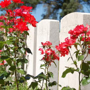 grave soldier