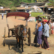 Pferdekutsche in Burma.
