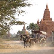In der Tempelstadt Bagan. Hier gibt es tausende mehr oder weniger gut erhaltene Pagoden, Zeugnisse einer Zeit, die von einstiger Macht und Reichtum künden.