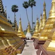 Die goldbelegten Stupas glänzen im Licht der Tropensonne.
