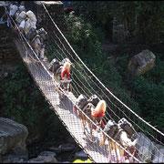 Unzählige Hängebrücken überwinden die Täler und verbinden die Ortschaften.