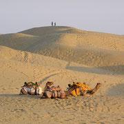 Endlose Wüstenlandschaft.