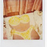 ref: S43 - 8,5x10,5cm -  Polaroid _ circa 1970/80 -