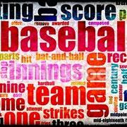 UD Baseball