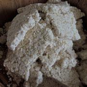5日目その2《米麹を樽へ》固まりになった米麹を、手でばらばらにほぐします。