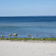 Strand von Hornbæk