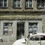 Eichstätt | Schmetterlingshaus von Marc Köschinger
