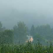 Altmühltal im Nebel