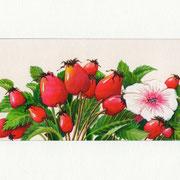 Layout-Illustration für Hagebutten-Malve-Tee von TEEKANNE | Dr. Ph. Martins Lasurfarben