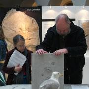 Museumsbesuch im Focus Terra ETH Zürich: Fossil Art