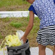 ゴミはゴミ箱に!