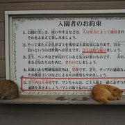 この公園の看板には、ネコが数匹たむろしていました。